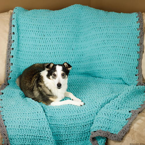Simple Crochet Dog Blanket - These free crochet afghan patterns are unique and fitting for any situation. Whether you're making a crochet baby blanket or a lapghan. #CrochetBlanketPatterns #DoubleCrochetBlankets #FreeCrochetPatterns